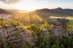 """dwif: Hilfe für den """"schlafenden Riesen"""": Auf dem Weg zur neuen Tourismusstrategie für die Pfalz.Touristik  (Bild: Pfalz.Touristik e.V.)"""